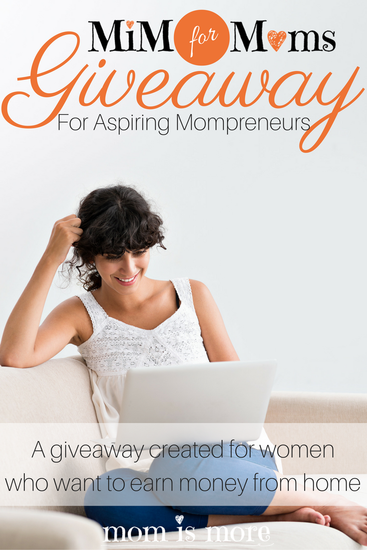 Momismore.com is hosting a MASSIVE series of giveaways for the month of August (and into September!) for aspiring work-at-home moms! I'm so excited to try and win some of the awesome prizes she has!