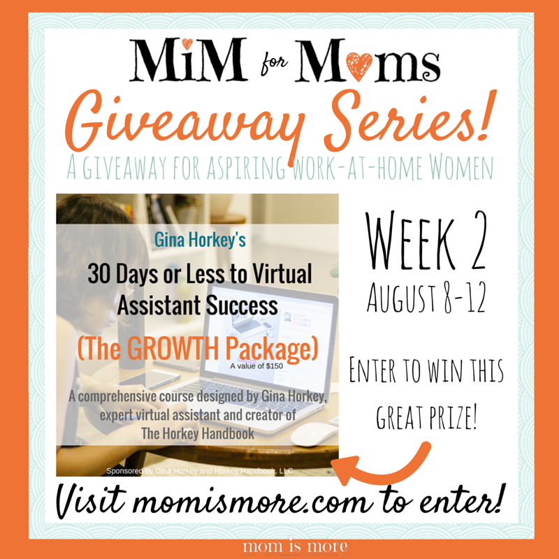 MomisMore.com is giving away a free enrollment to Gina Horkey's 30 Days or Less to Virtual Assisting Success! I'm so excited!